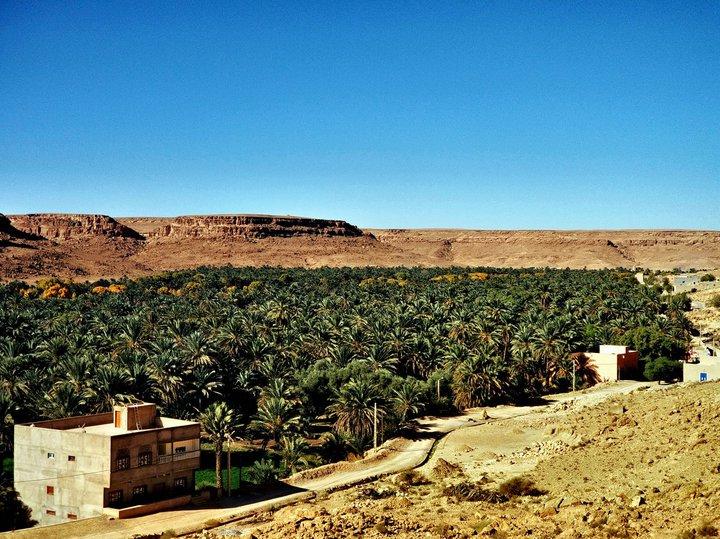 Фотоотдых. Как выглядят синий город в Марокко и оазис вдоль самой большой реки в стране