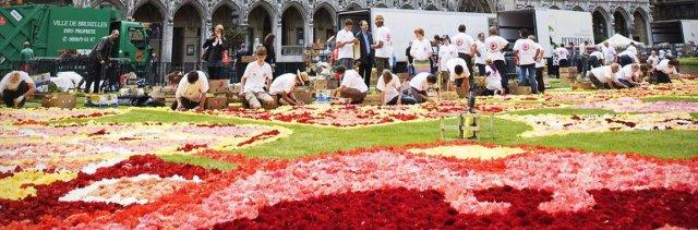 В Брюсселе развернут мексиканский цветочный ковер