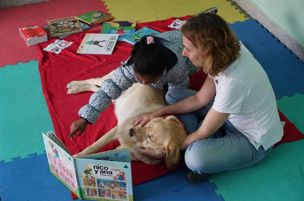 Улучшить навыки чтения ученикам 50 испанских школ помогают... собаки