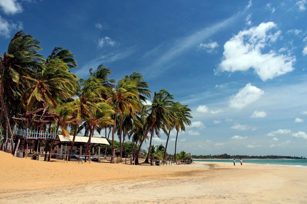 Шри-Ланка приняла почти 40 тыс. российских туристов