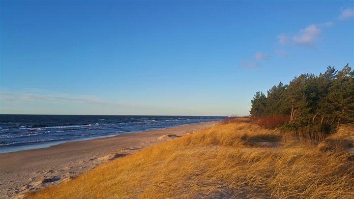 Теплая Балтика