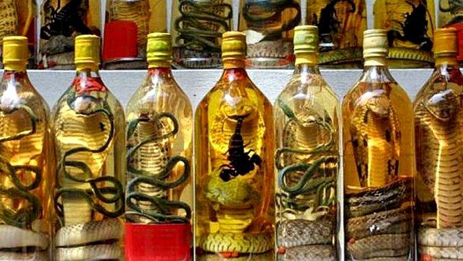 Закрыт последний змеиный ресторан Тайбэя