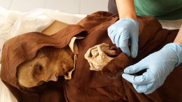 В Кинто (Сарагоса) открылся первый испанский Музей мумий