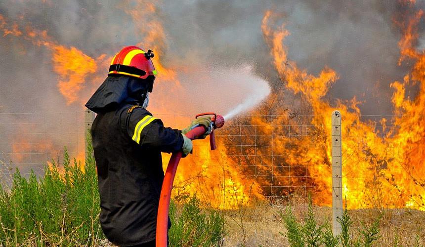 На пожарах в Греции погибло более 60 человек