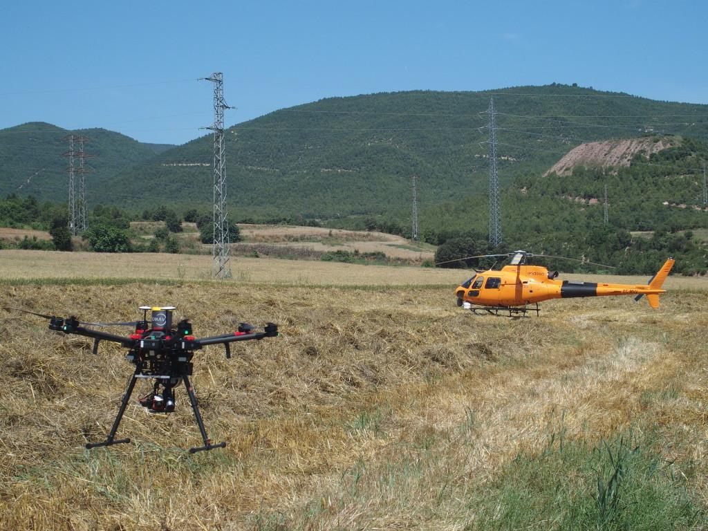 Испанцы теперь контролируют состояние растительности под линиями электропередач