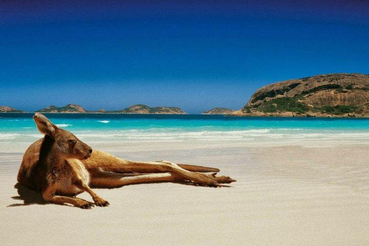 Планируете отпуск? Собрали для вас 12 интересных направлений для отдыха
