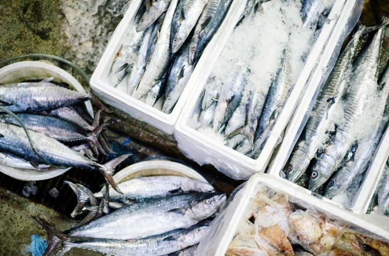 Какие виды рыбы и морепродуктов лучше всего использовать в пищу в каждое время года?