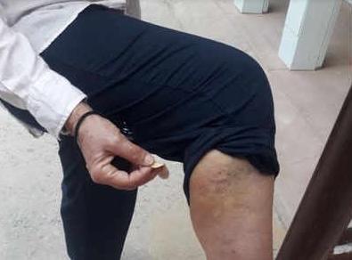 Стая обезьян атаковала туристку во время экскурсии в Тадж Махал