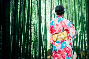 В Японии придумали способ путешествовать совсем без вещей и багажа