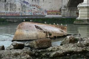 Экологи Италии бьют тревогу: вода в морях стала грязнее