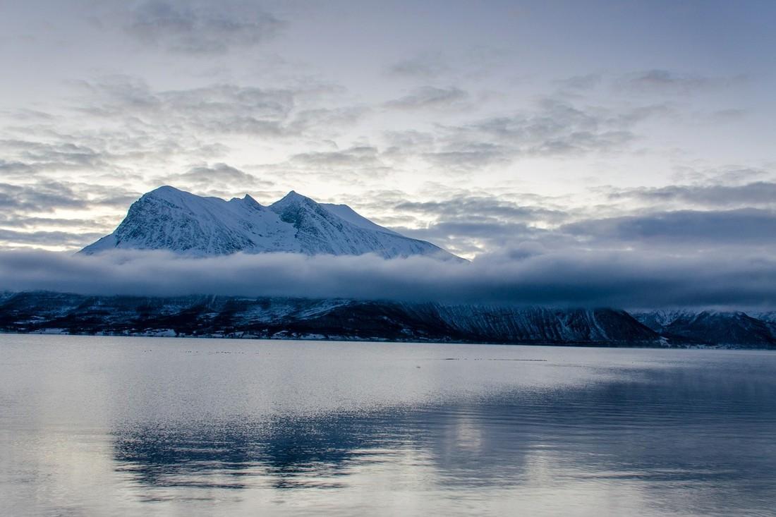 Новый год в Арктике раскуплен