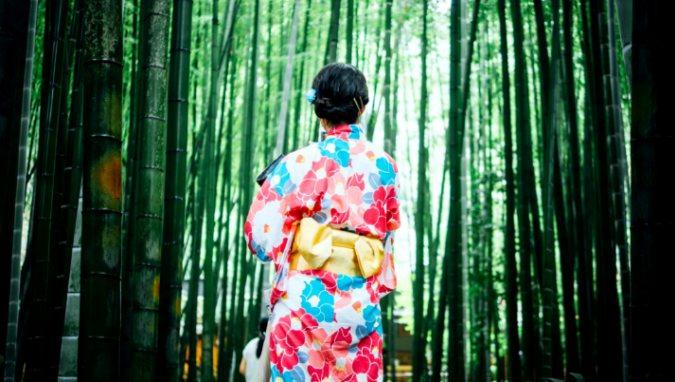В Японии придумали способ путешествовать без багажа