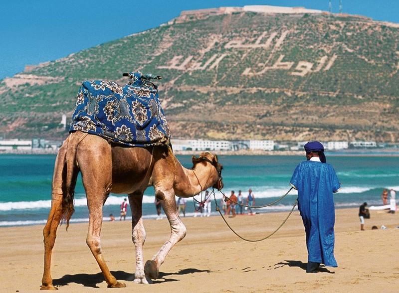 Марокко посетили более 5 млн туристов