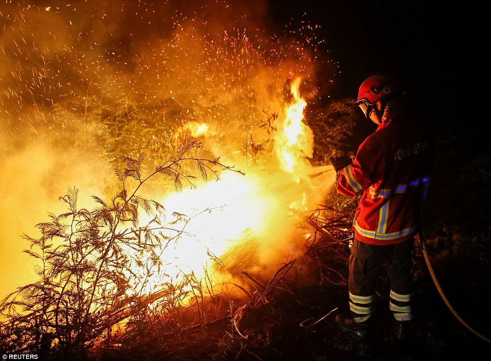 Туроператоры: лесные пожары в Португалии российских туристов не испугали, отказов нет
