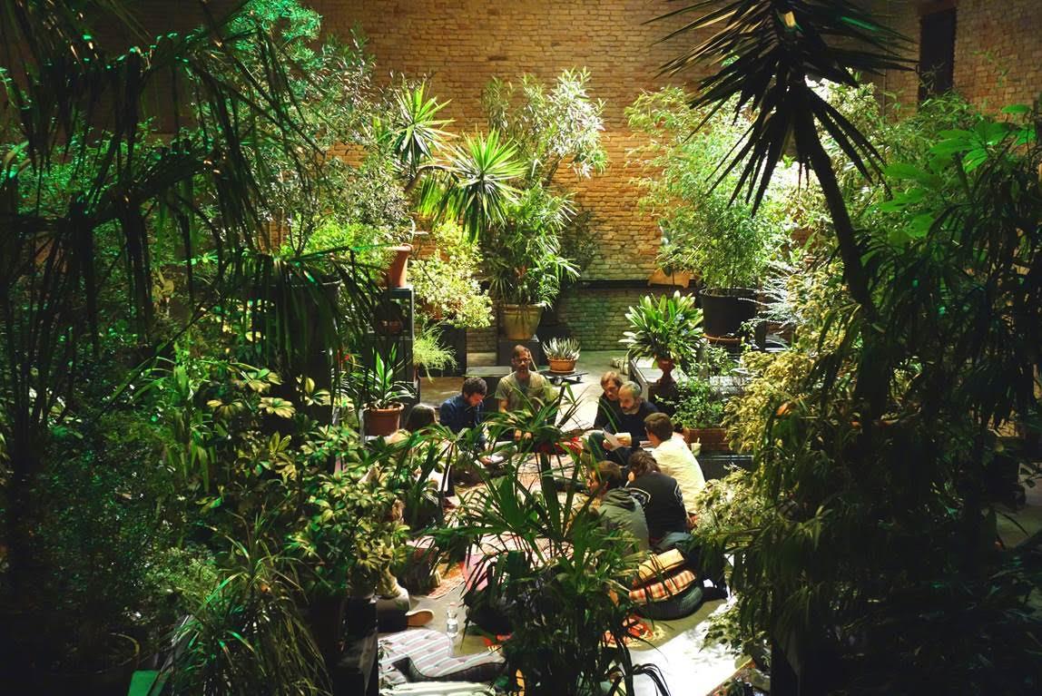 У жителей Мадрида позаимствуют растения для создания тропического сада