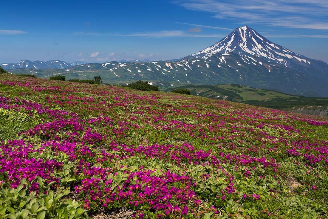 Спрос на перелет туристов на Камчатку вырос на 23%