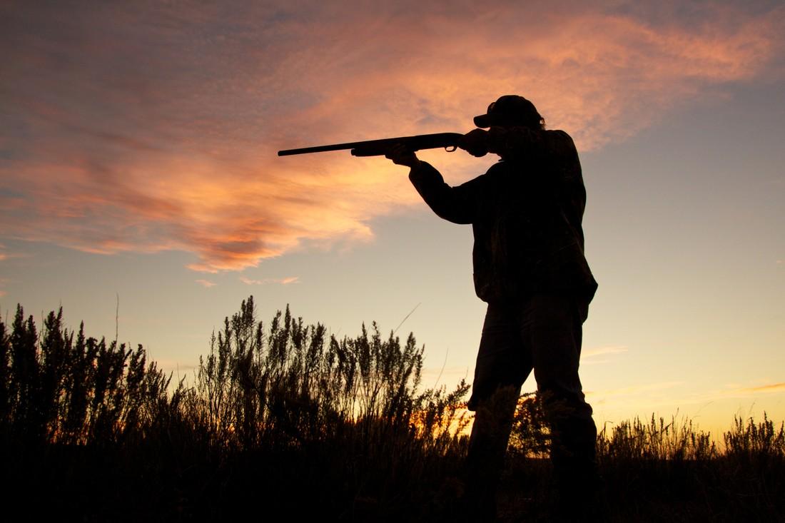 На Алтае туристов обстреляли из карабина