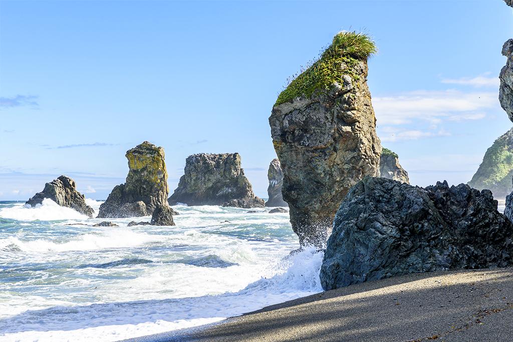 Россия предложила Японии создать совместный туристический кластер на Сахалине