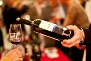 Фестиваль вина и сыра состоится в Будапешт в ближайшие выходные