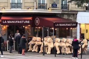 Армия плюшевых медведей захватила 13-й округ Парижа