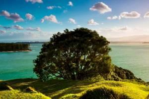 Новозеландские нудисты ждут нового хозяина своего парка