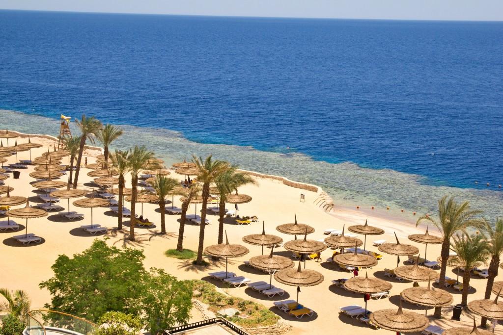 Майя Ломидзе: Египет для туристов откроют весной, но не весь