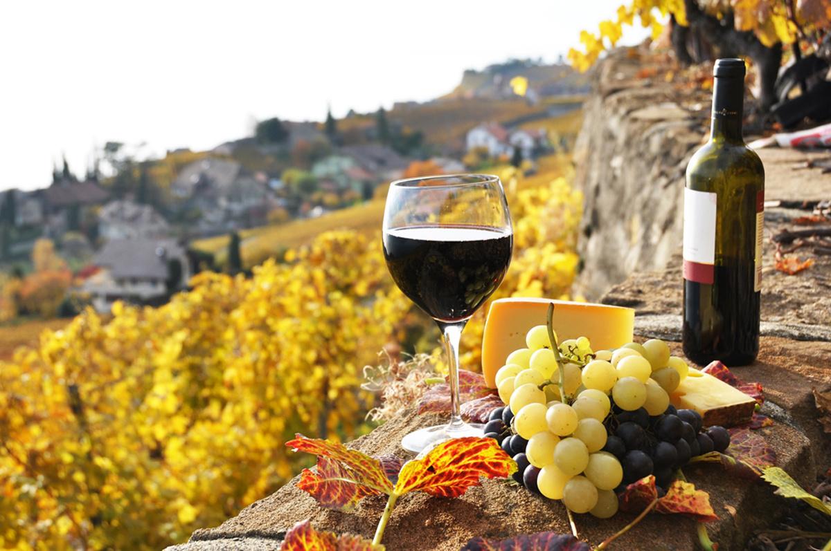 Испанское вино Rioja поднялось на четвертое место в рейтинге 100 лучших вин мира