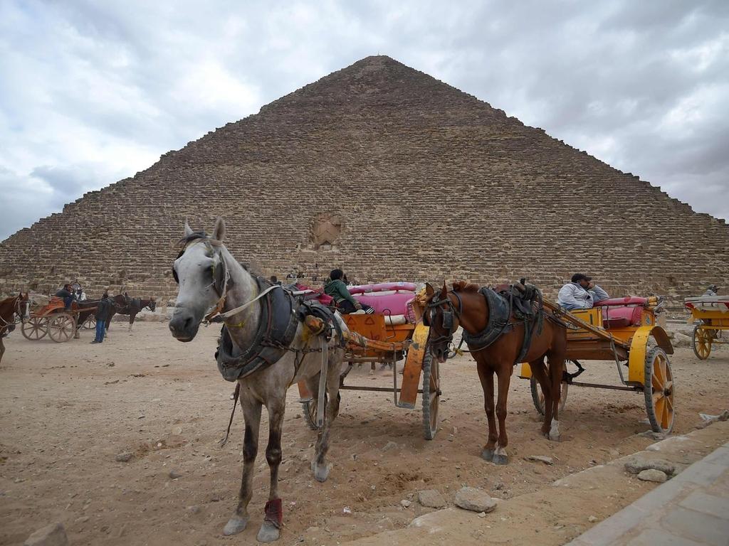 В Египте ожидают 6 млн туристов в первой половине 2019 года