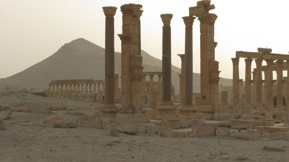 Французский туроператор начал продавать туры в Сирию
