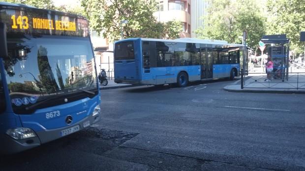 В столичных автобусах можно будет ездить с собаками и самокатами