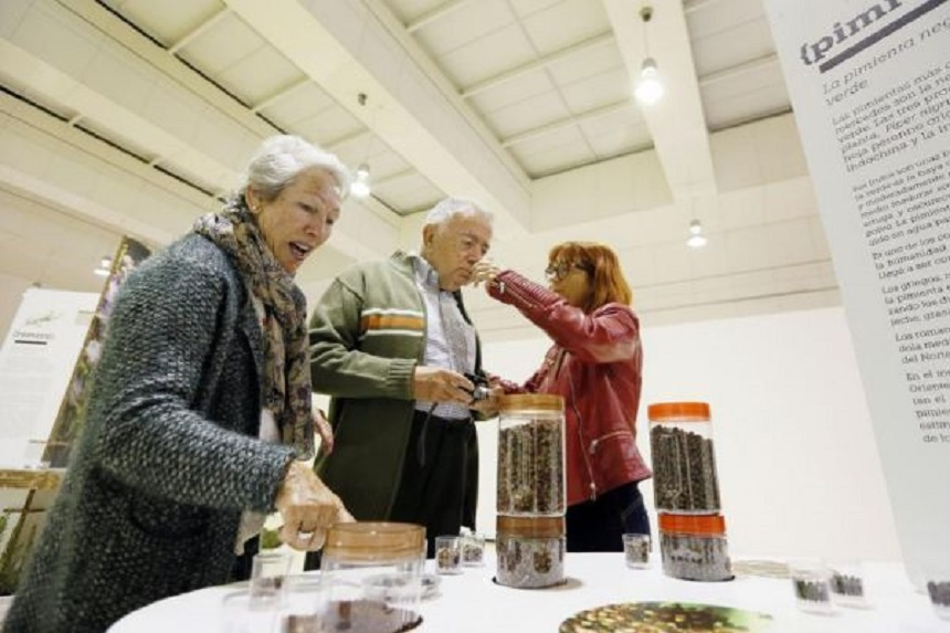 В университете Аликанте создаются проекты для людей с болезнью Альцгеймера