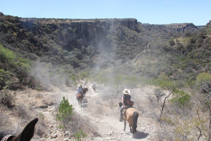 «Ты на лошади, а до обрыва - два метра». Денис Дудинский и Катя Раецкая об экстремальной экспедиции в Мексику