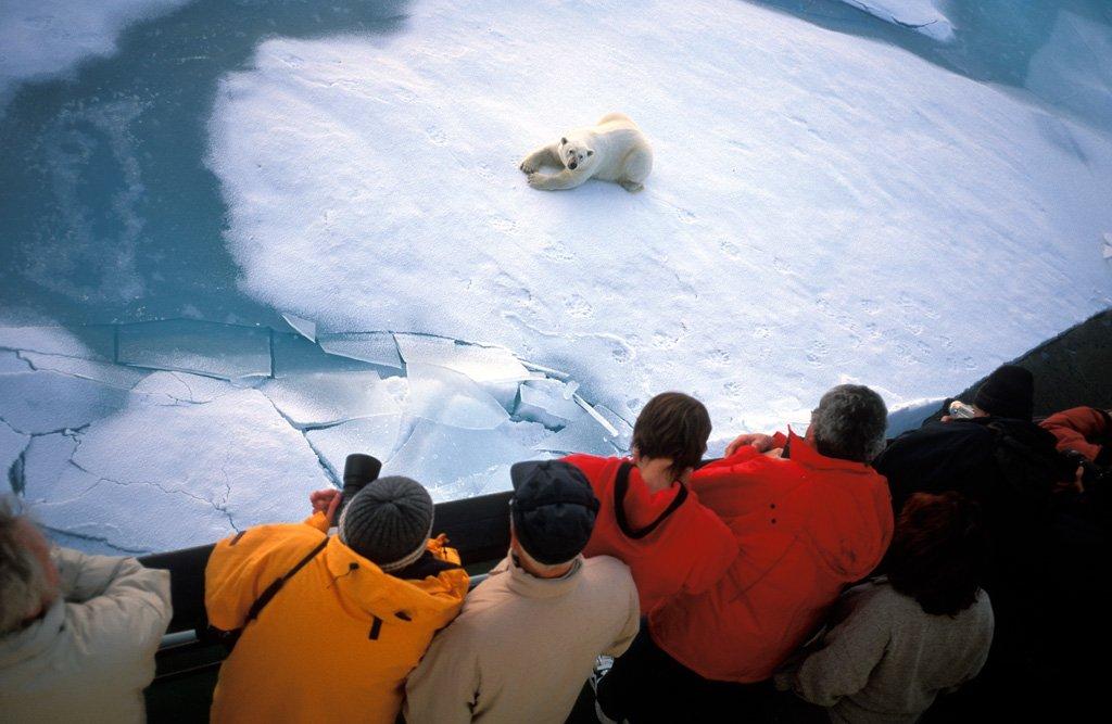 Минэк поручил Ростуризму разработать программу развития круизного туризма в Арктике