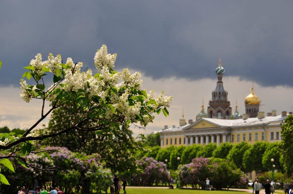 Петербург за майские праздники посетили 500 тыс. туристов