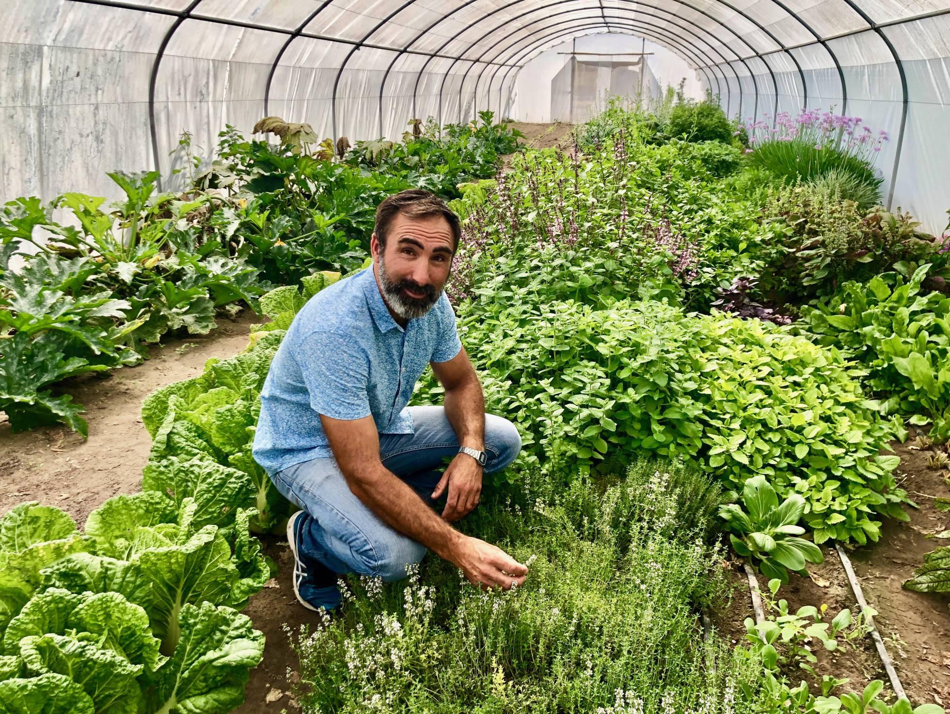 Новый виток развития традиционного садоводства на побережье Испании