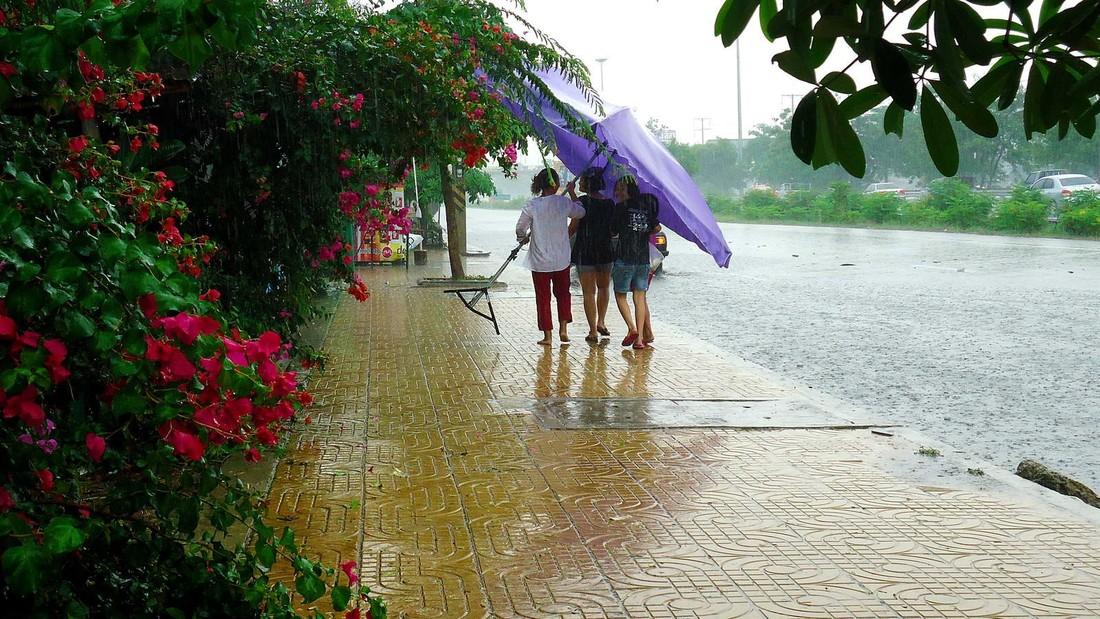 Сезон дождей в Таиланде: управление по туризму предупреждает о лихорадках