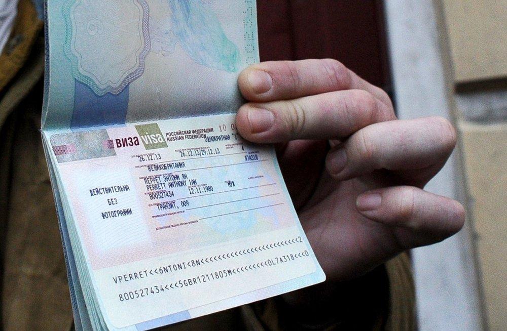 Догузова: электронные визы для иностранных туристов удлинят до 14 дней