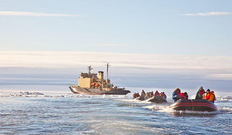 Совет Федерации пригласил иностранных туристов в Арктику: процедуры упрощены