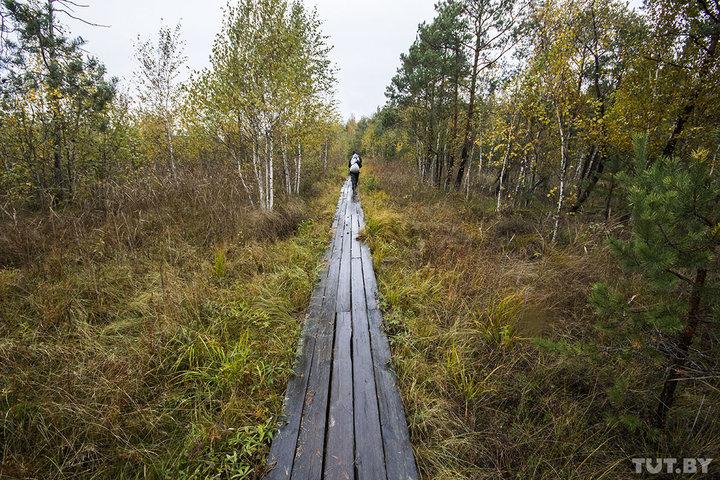 В «Ольманских болотах» и «Средней Припяти» запретили ставить палатки