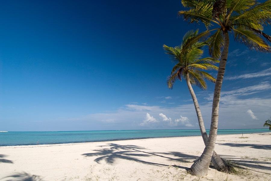 «Форбс» назвал лучшие отели Пунта-Каны «премиум класса»
