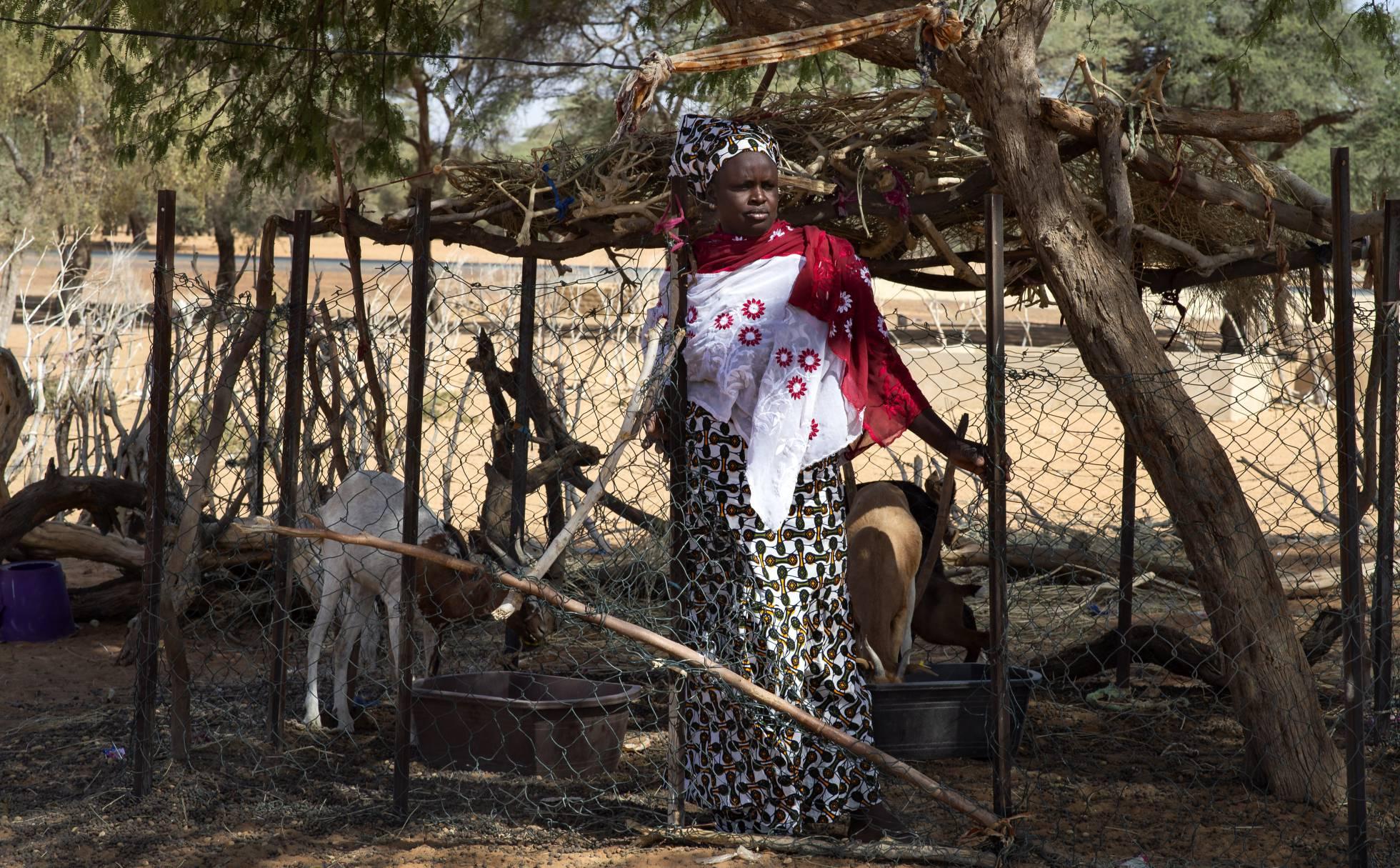 Испания помогает Сенегалу улучшать качество жизни