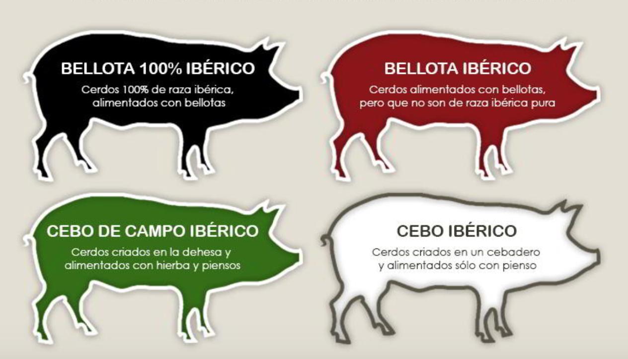 В чем разница между хамоном иберико и серрано