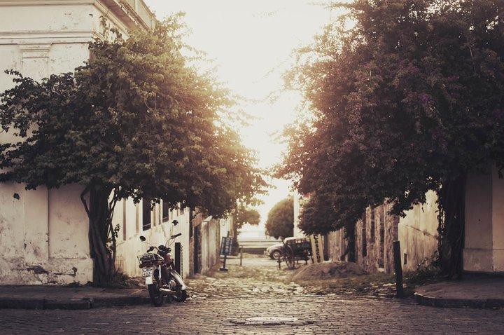 Фото: unplash.com