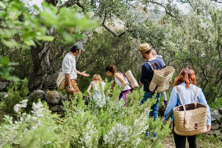 В Каталонии организуют «обонятельные» прогулки по природным уголкам в поисках ароматов