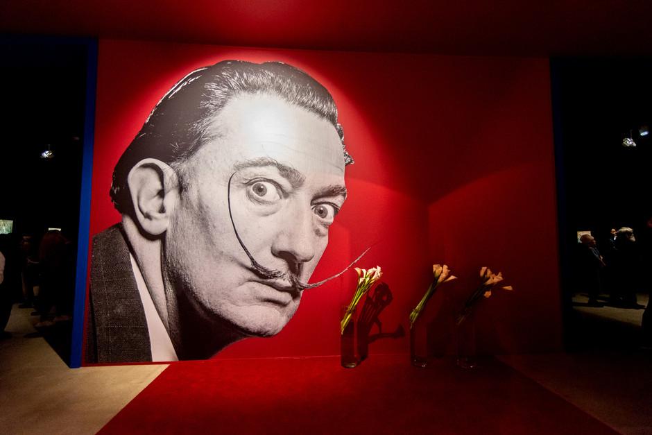 Масштабная выставка «Сальвадор Дали. Магическое искусство» в Москве