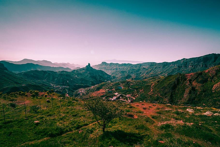 Природа в прямом эфире: веб-камеры для тех, кто скучает по природе Испании