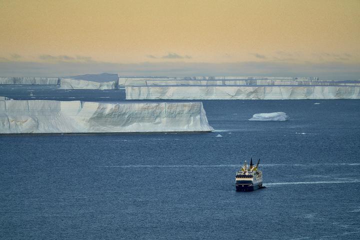 Корабль «Оушен Нова» среди антарктических айсбергов. Фото: Родриго Морага