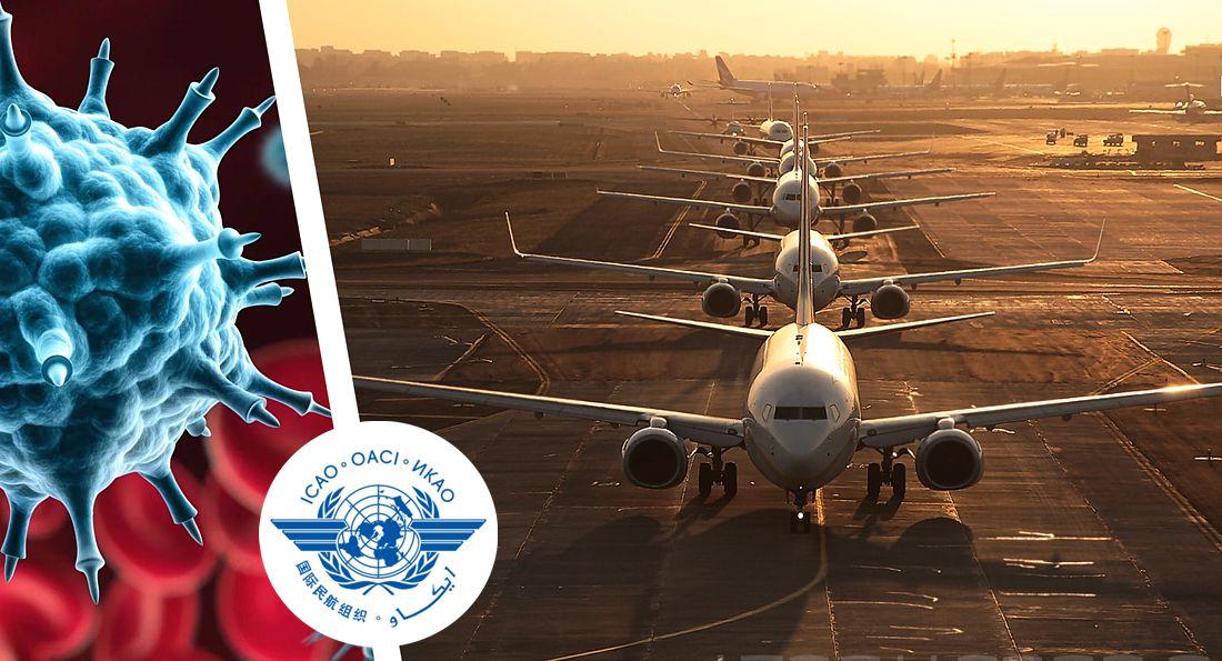 Прогноз ICAO: к сентябрю международный пассажиропоток сократится на 2/3