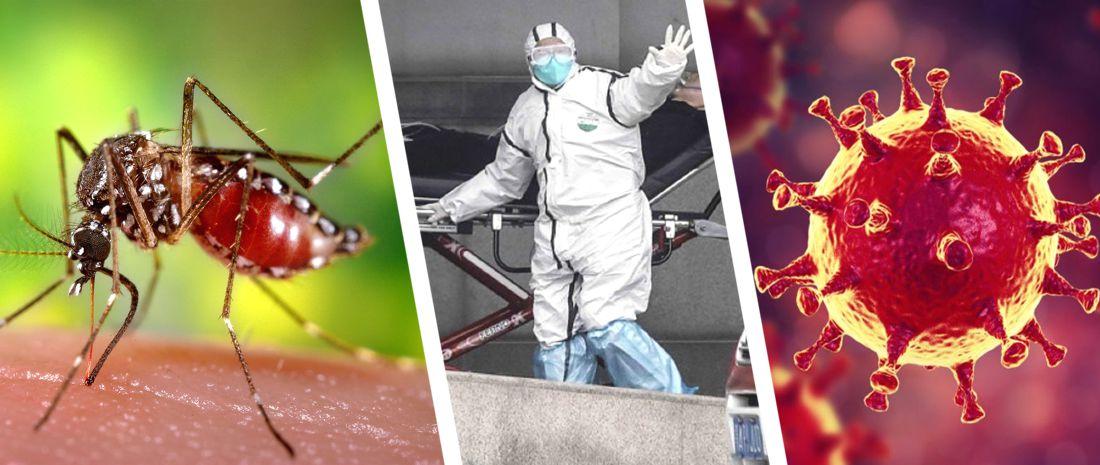 Комары переносят коронавирус, а чеснок защищает? Опровергаем популярные мифы