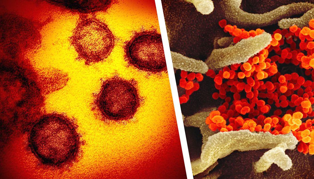 Россия обогнала Китай по коронавирусу, а в мире число инфицированных превысило 3 млн